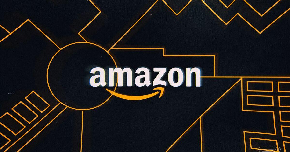 Amazonda İlk Yıl: Giriş – Gelişme – Gidişat
